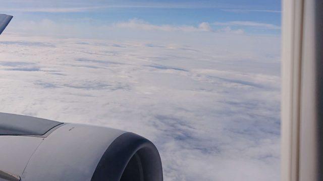 神奈川県民で土地勘ゼロな私でも分かる!出雲大社へ飛行機で行く方法アイキャッチ用