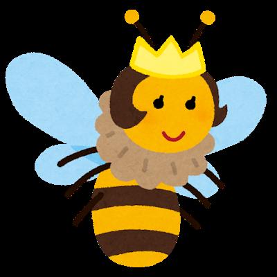 女王蜂のメンバーの性別、年齢は?ファンクラブの会費の支払い方法も2