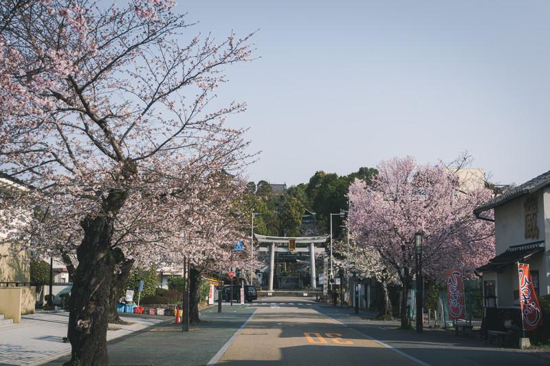 三峰神社のお守りが凄くて浅田真央も持ってる?2021年版は?値段は?6