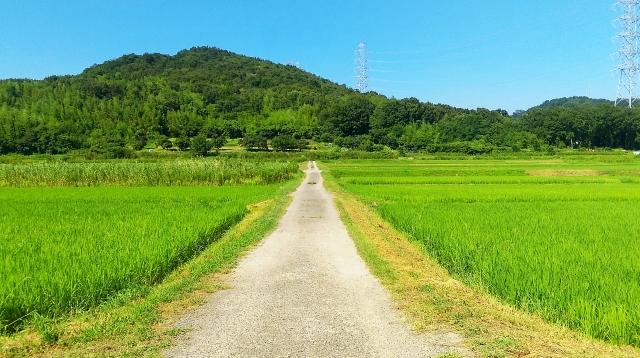 出口真帆は福岡県のどこ出身で身長や誕生日は?親、兄弟等の家族は?1